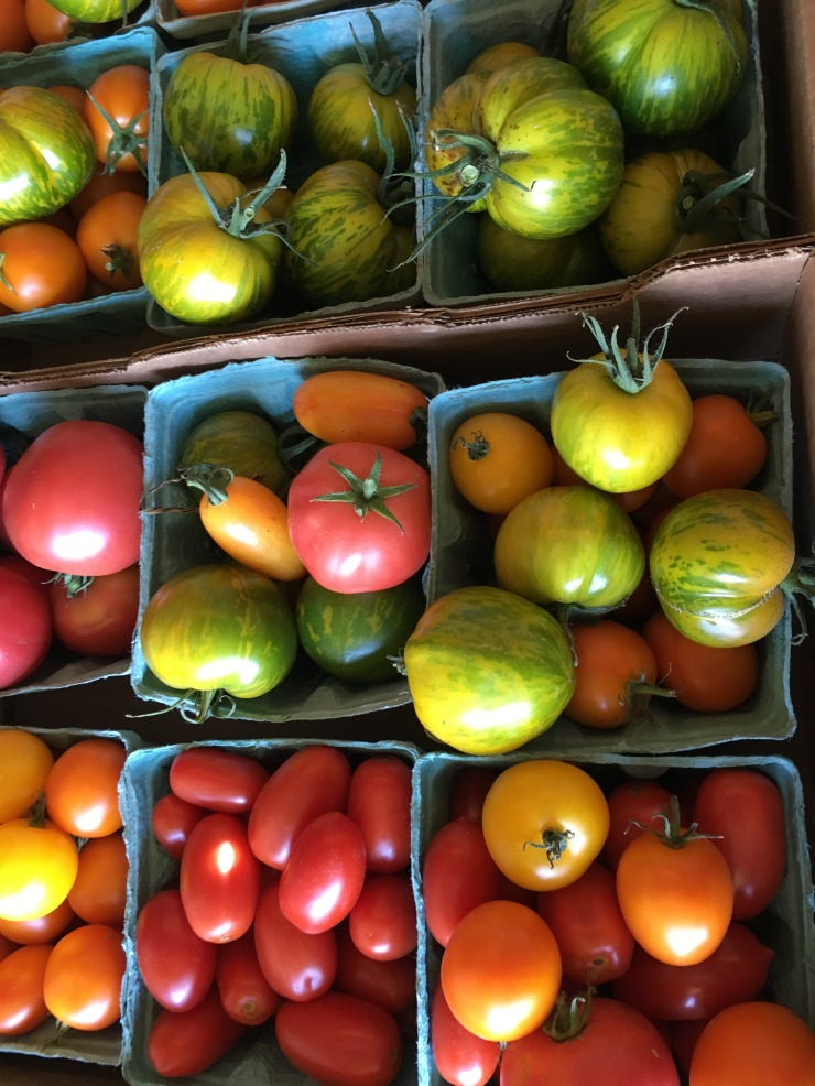 Our heirloom and specialty tomatoes